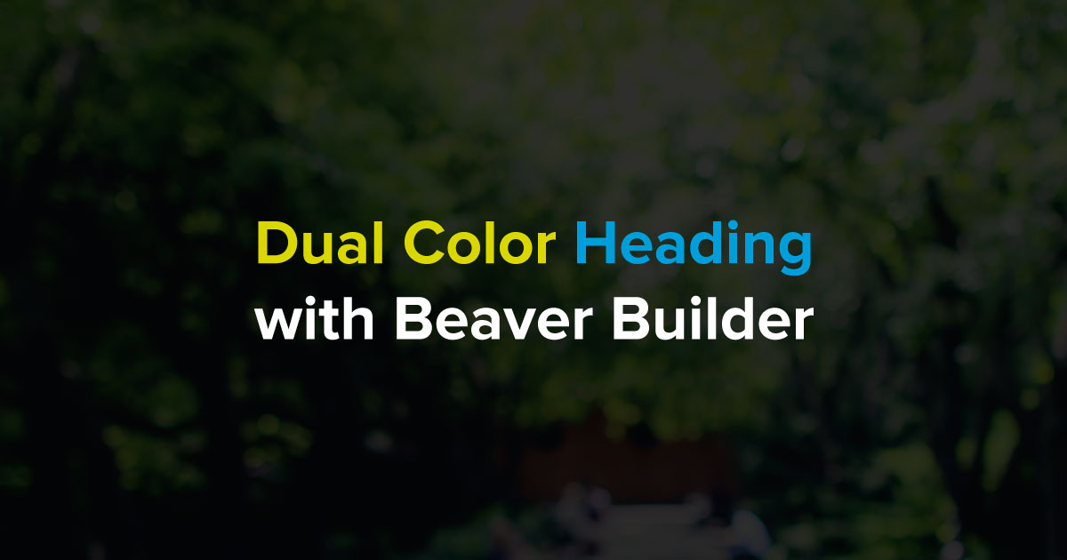 dual-color-heading-image