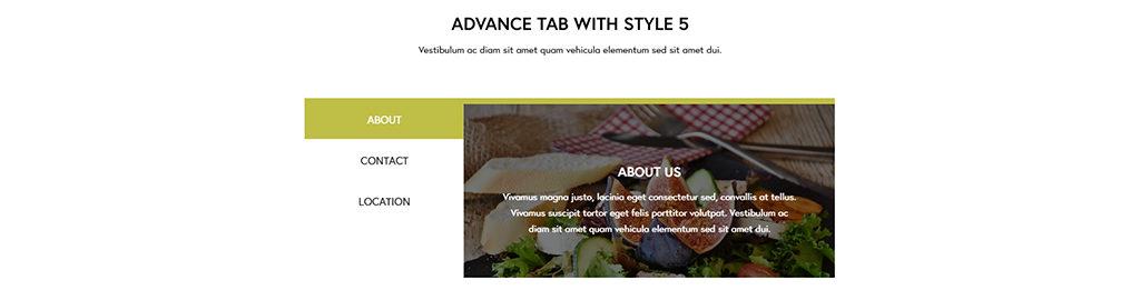 advanced-tabs-004
