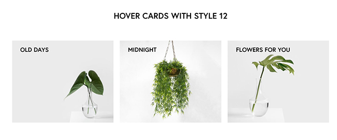 hover-cards-006
